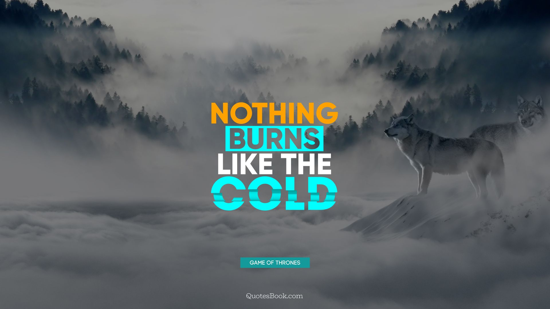 Nothing burns like the cold. - Quote by George R.R. Martin