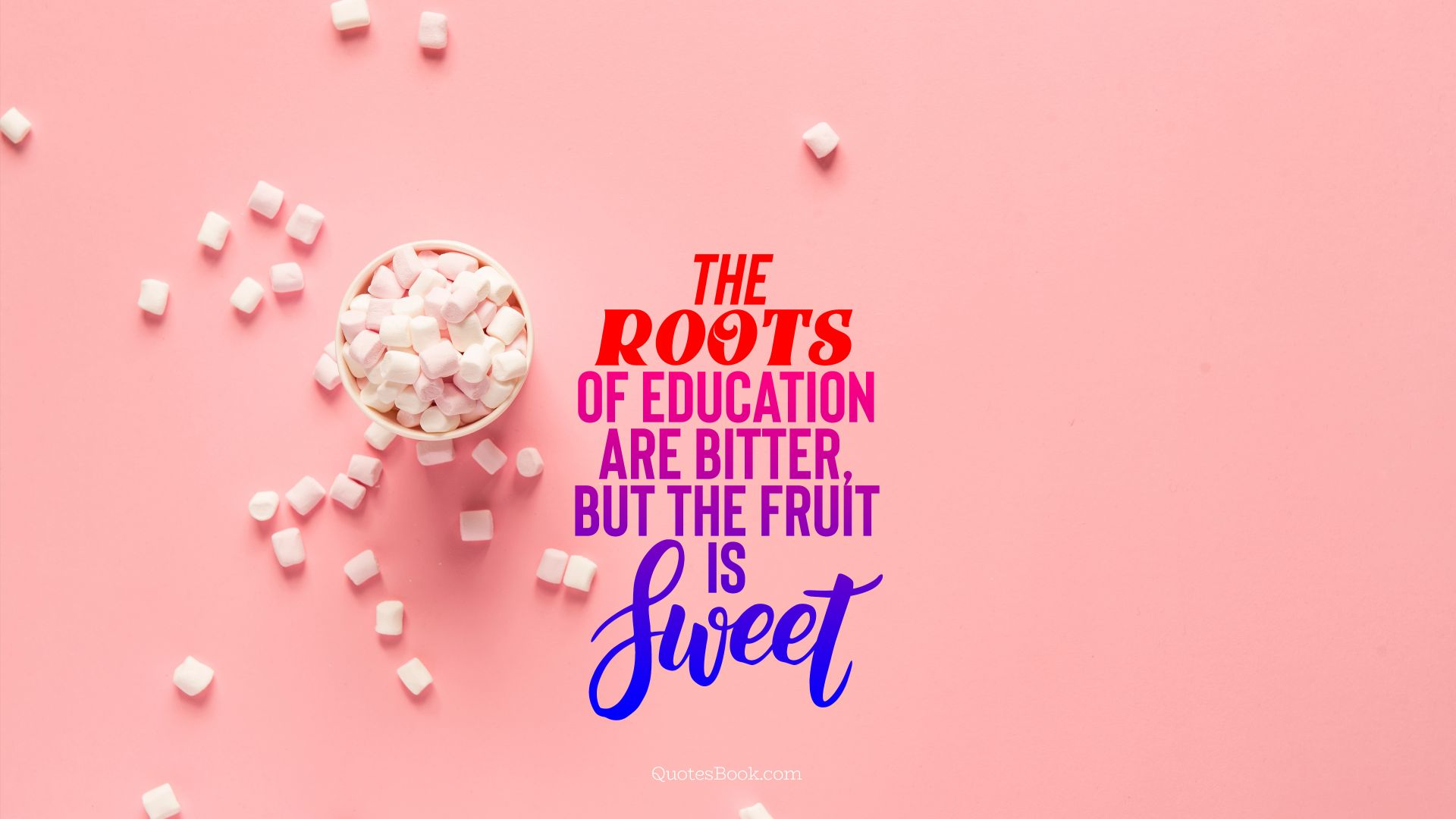 The roots of education are bitter, but the fruit is sweet