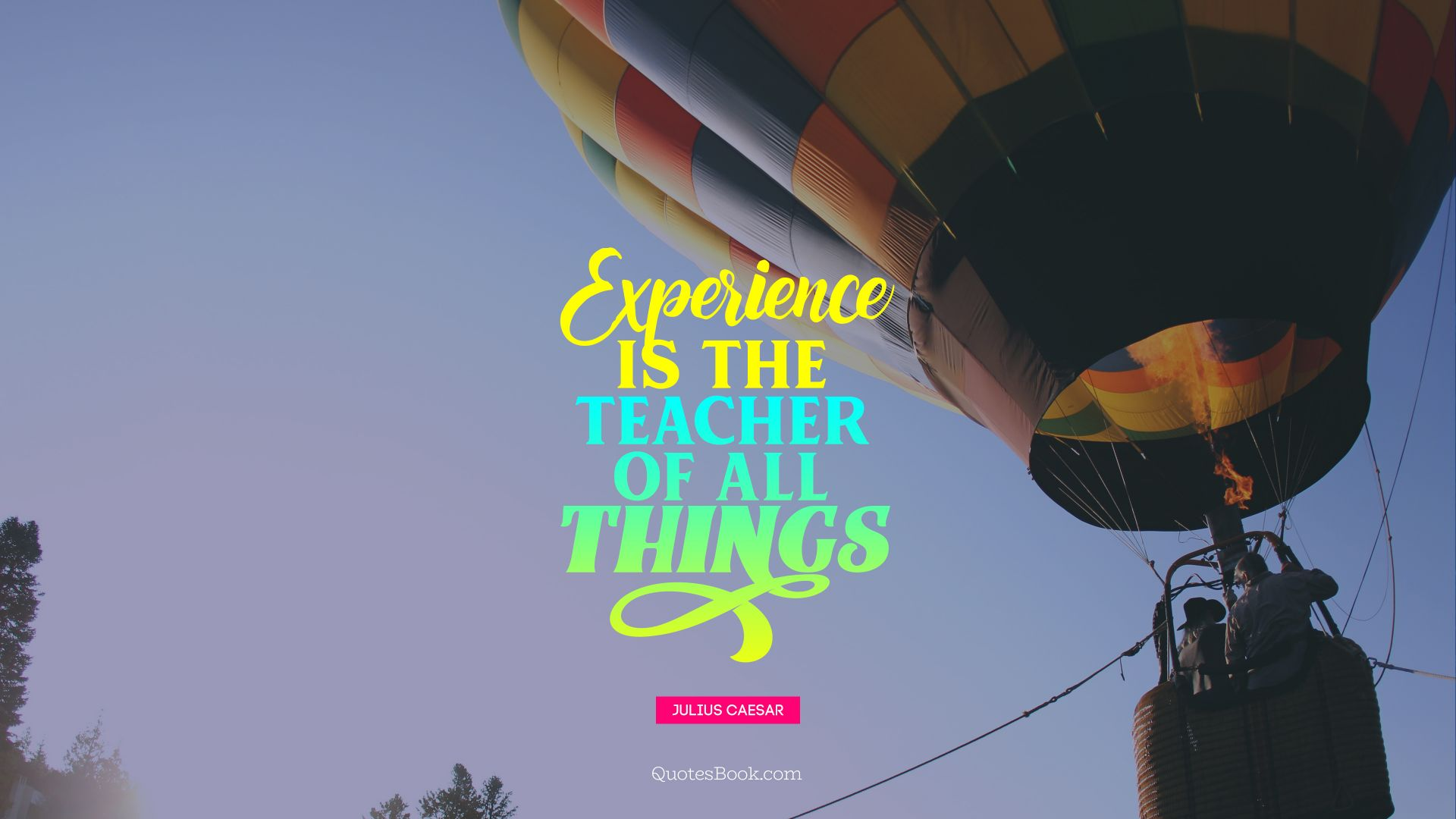 Experience is the teacher of all things. - Quote by Julius Caesar