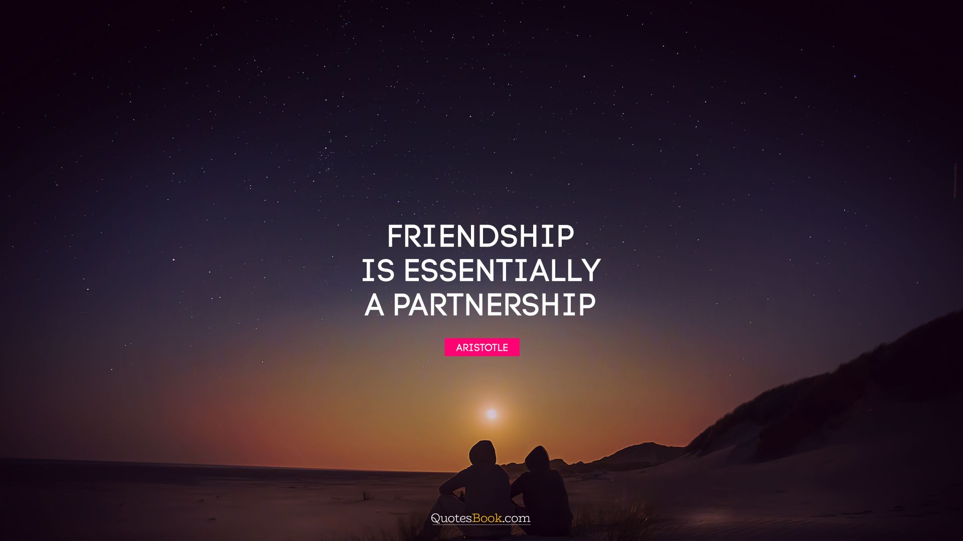 Friendship is essentially a partnership. - Quote by Aristotle