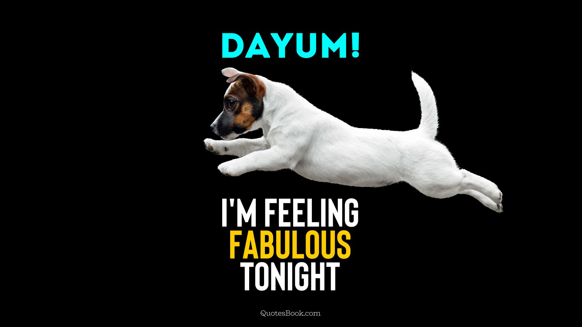 Dayum! I'm feeling fabulous tonight