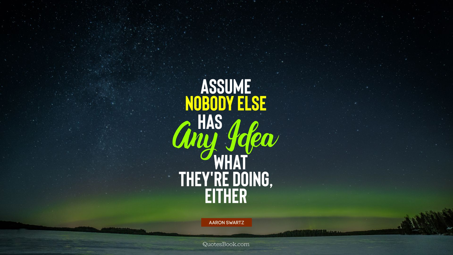 Assume nobody else has any idea what they're doing, either. - Quote by Aaron Swartz