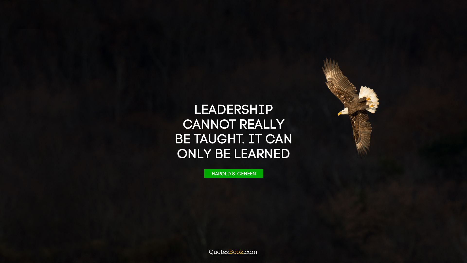 Leadership cannot really be taught. It can only be learned. - Quote by Harold S. Geneen