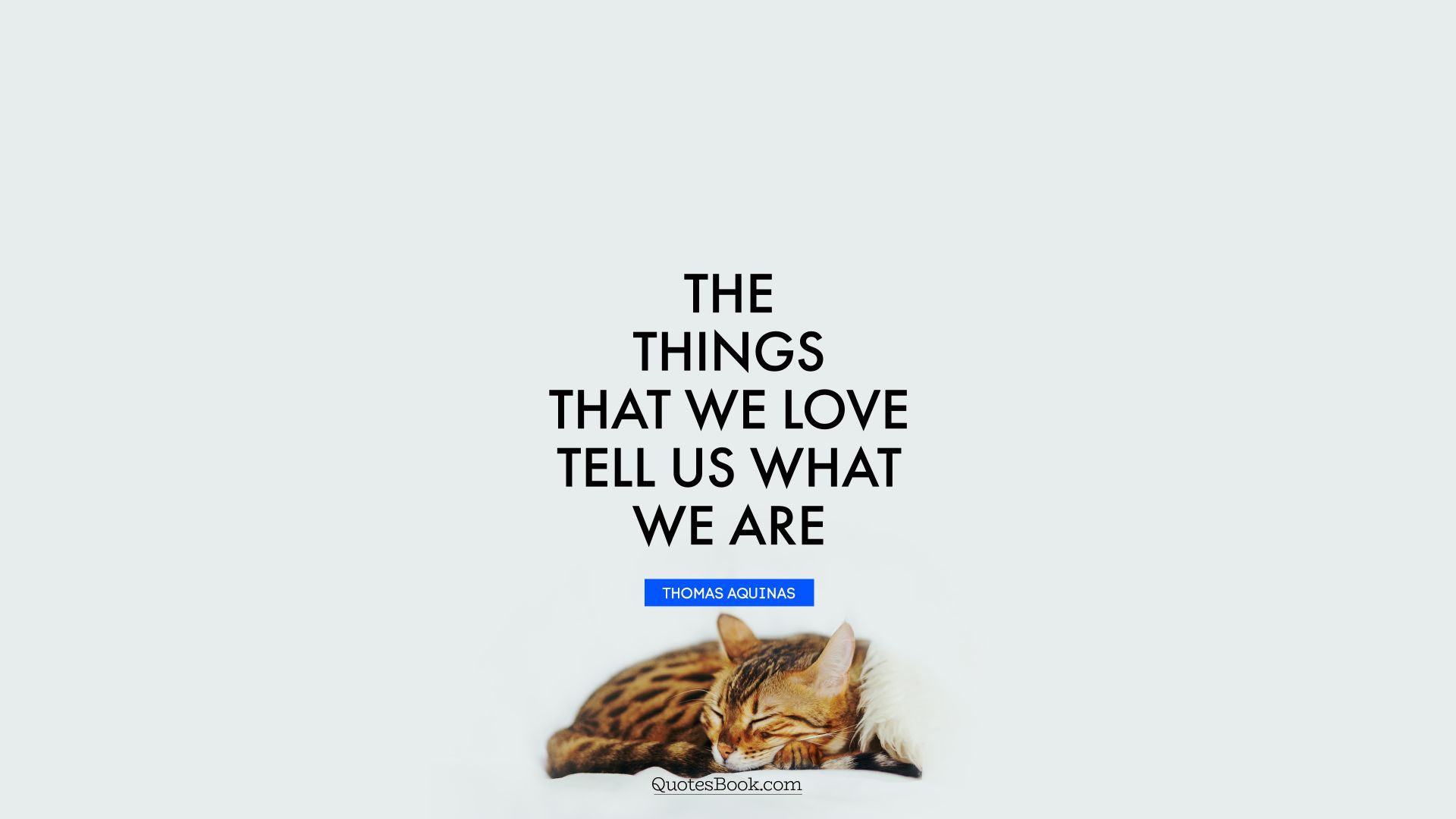 The things that we love tell us what we are. - Quote by Thomas Aquinas