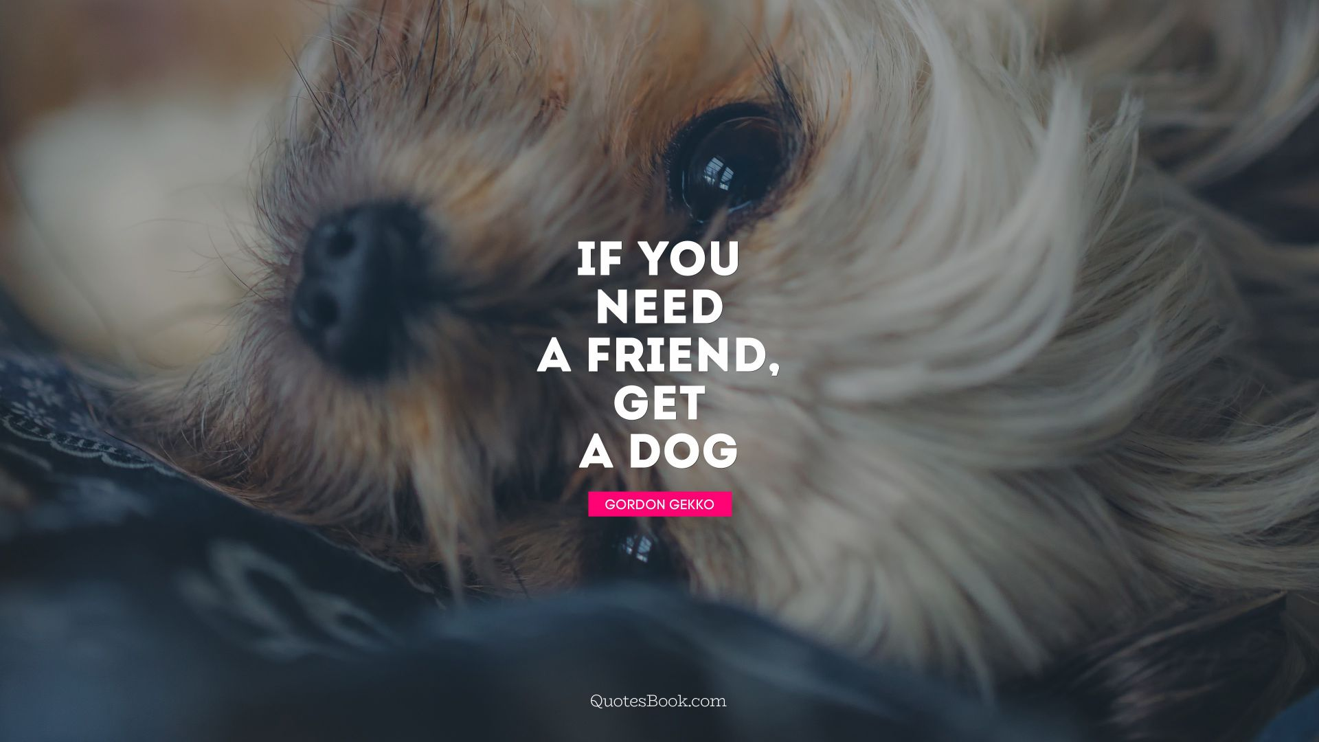 If you need a friend, get a dog. - Quote by Gordon Gekko