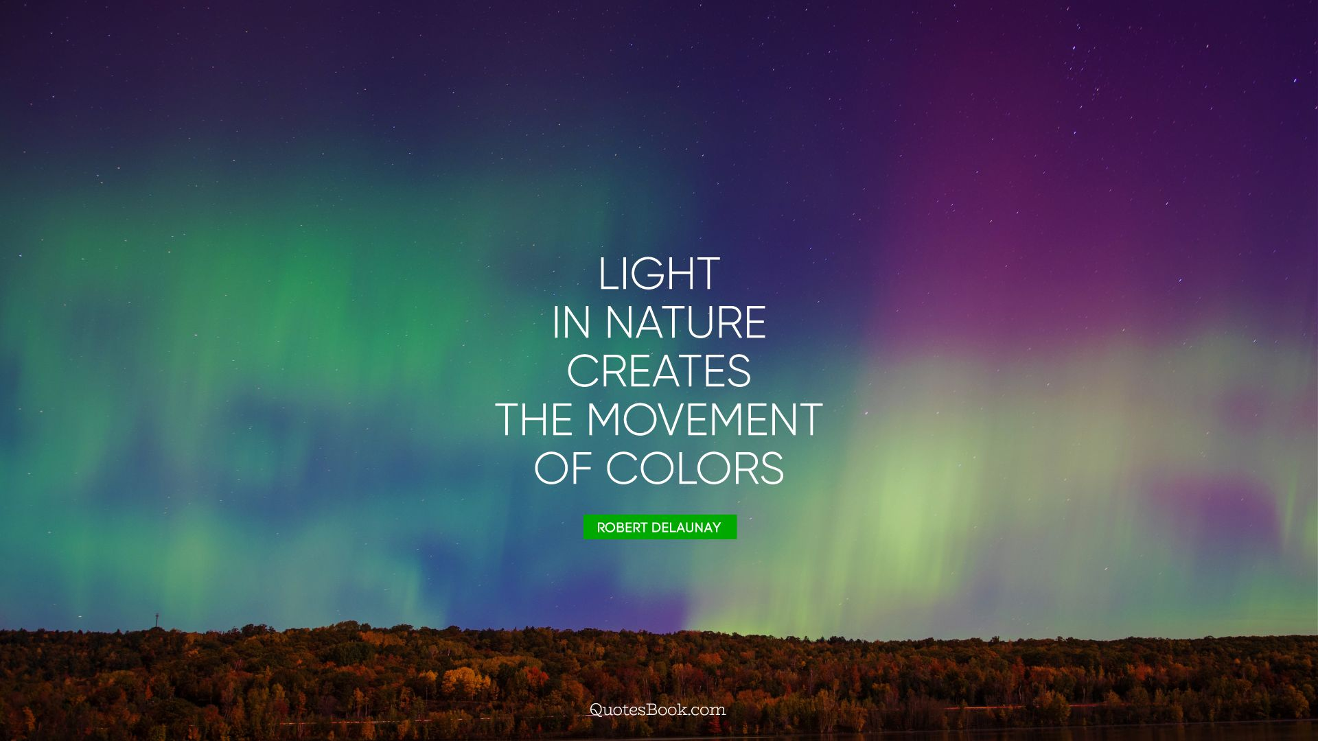 Light in Nature creates the movement of colors. - Quote by Robert Delaunay