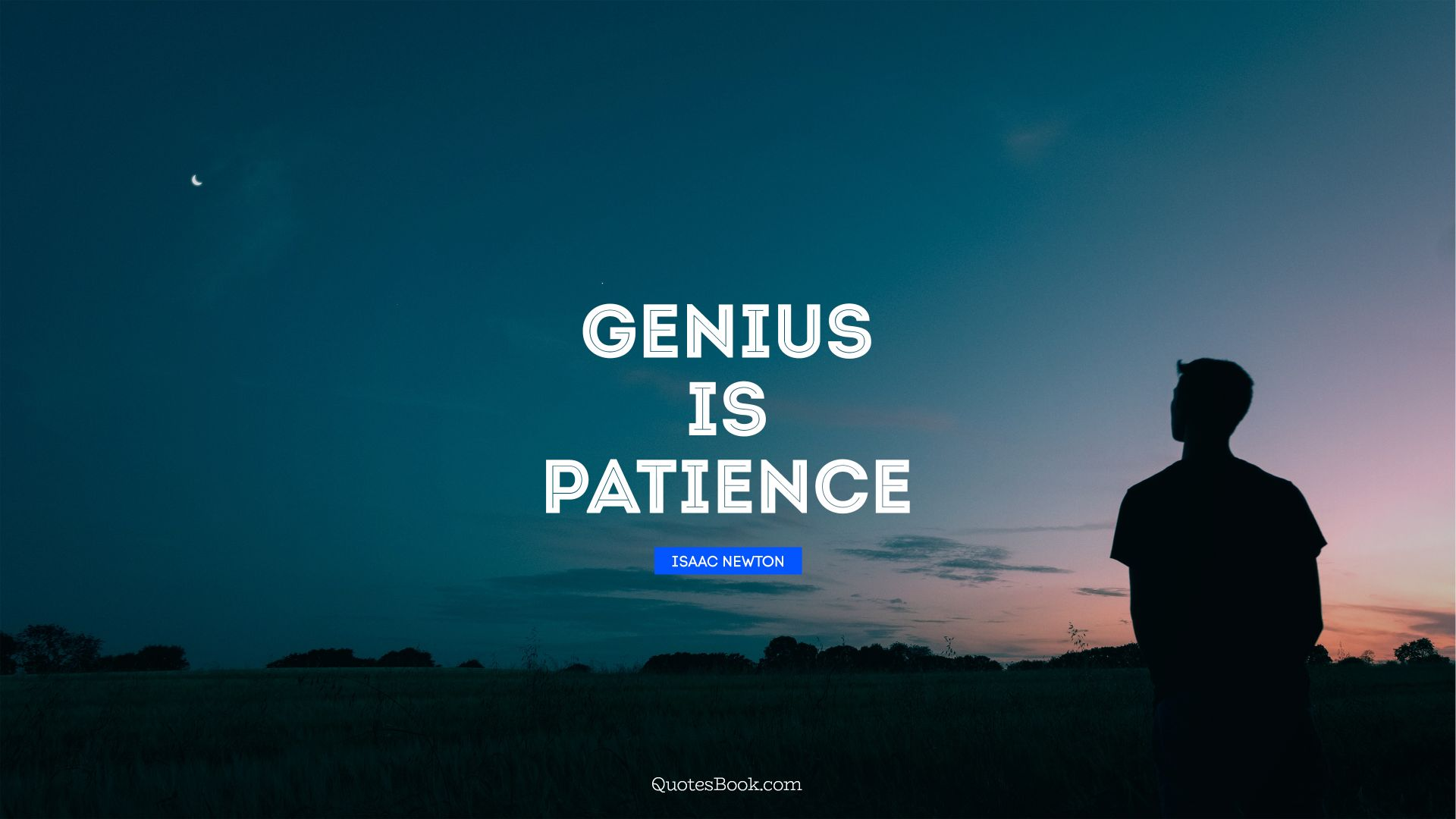 Genius is patience. - Quote by Isaac Newton