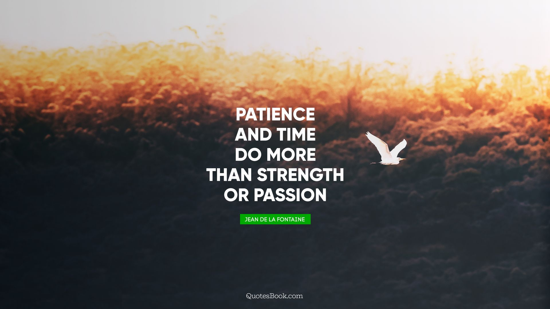 Patience and time do more than strength or passion. - Quote by Jean de La Fontaine