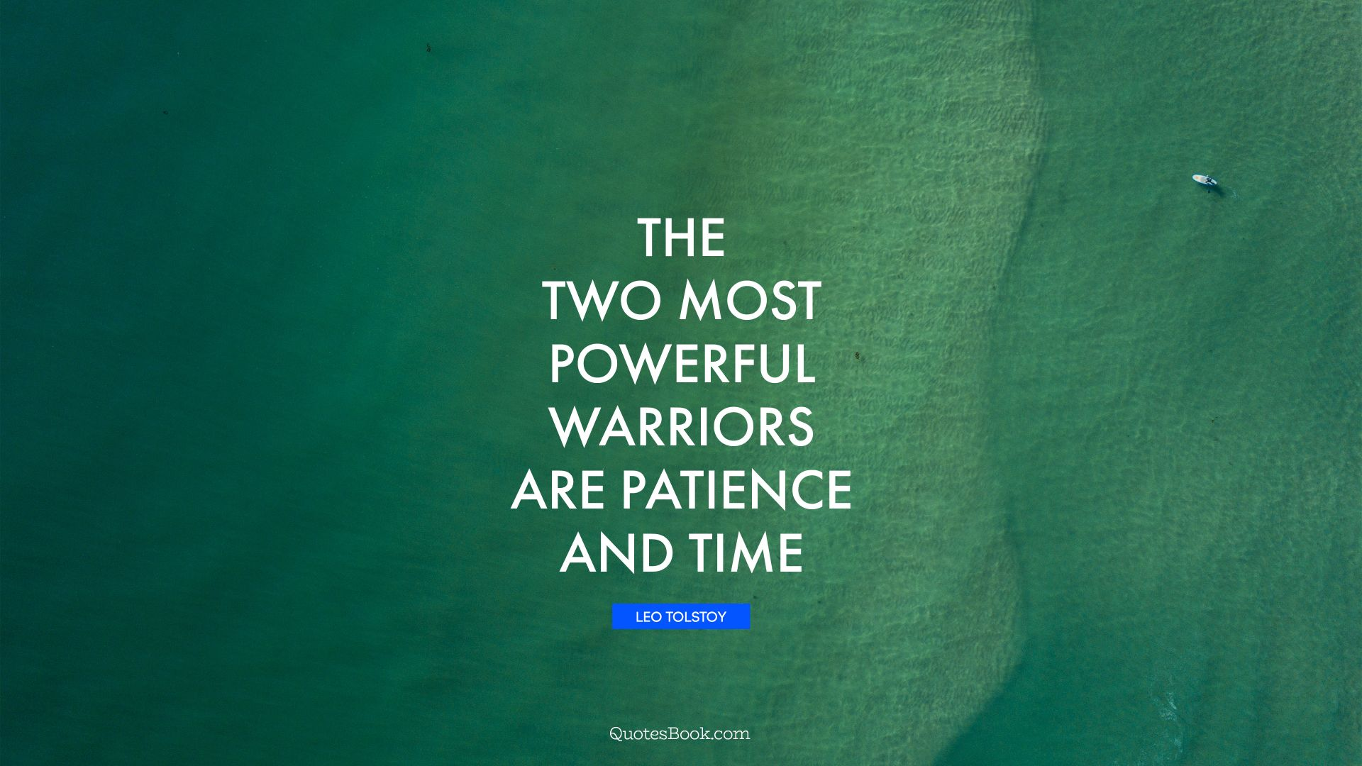 The two most powerful warriors are patience and time. - Quote by Leo Tolstoy