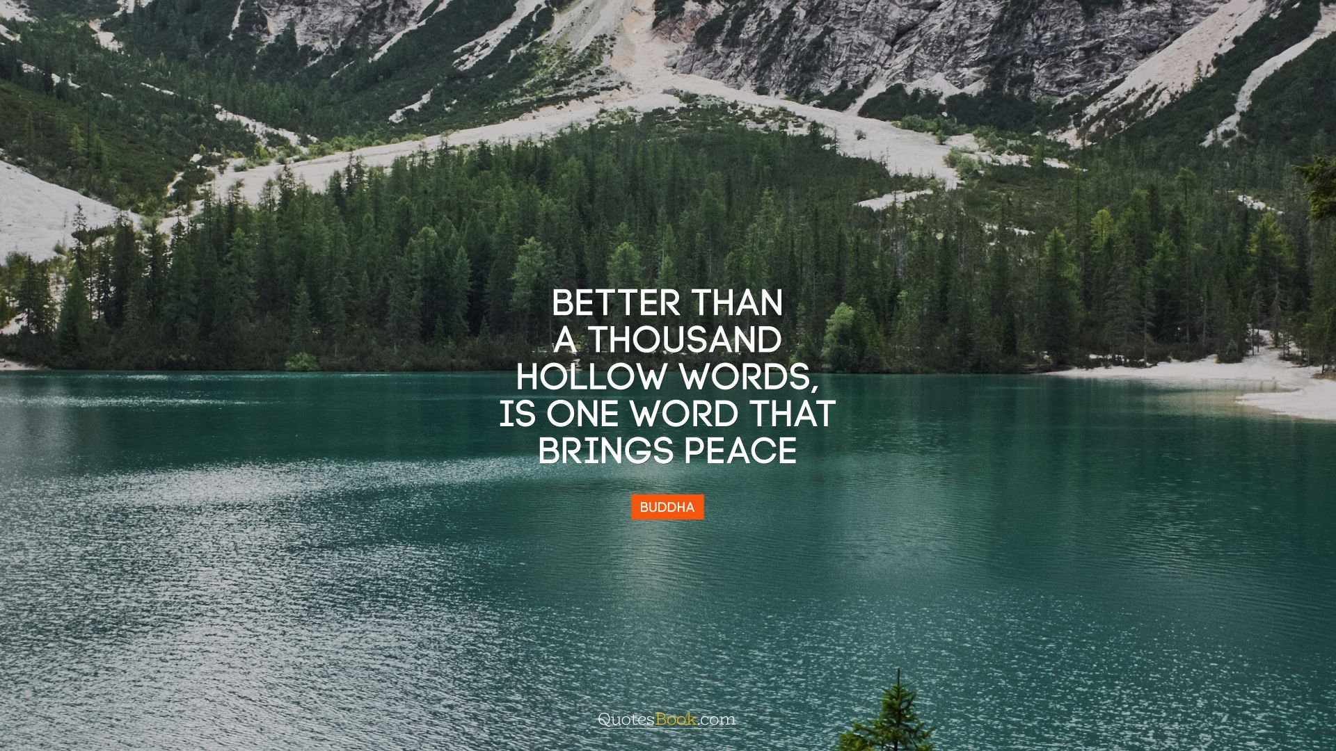 Better than a thousand hollow words, is one word that brings peace. - Quote by Buddha