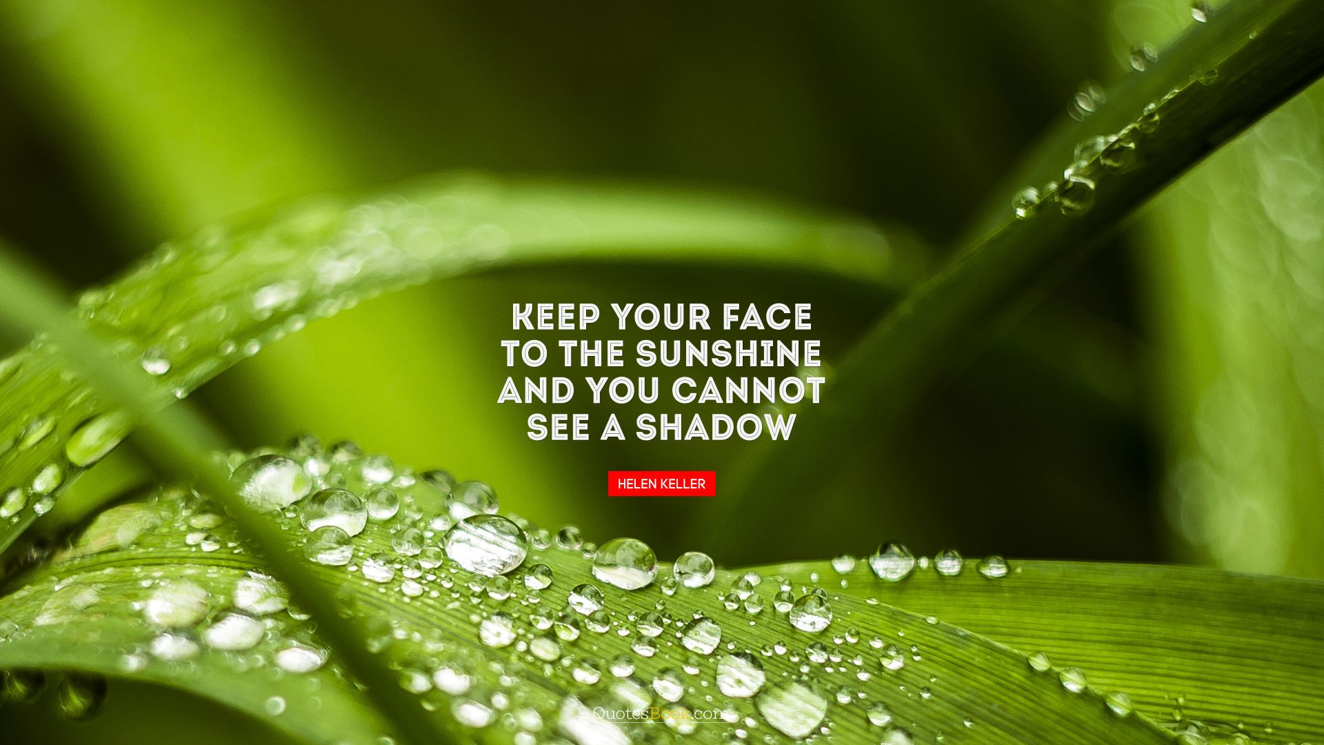 Keep your face to the sunshine and you cannot see a shadow. - Quote by Helen Keller