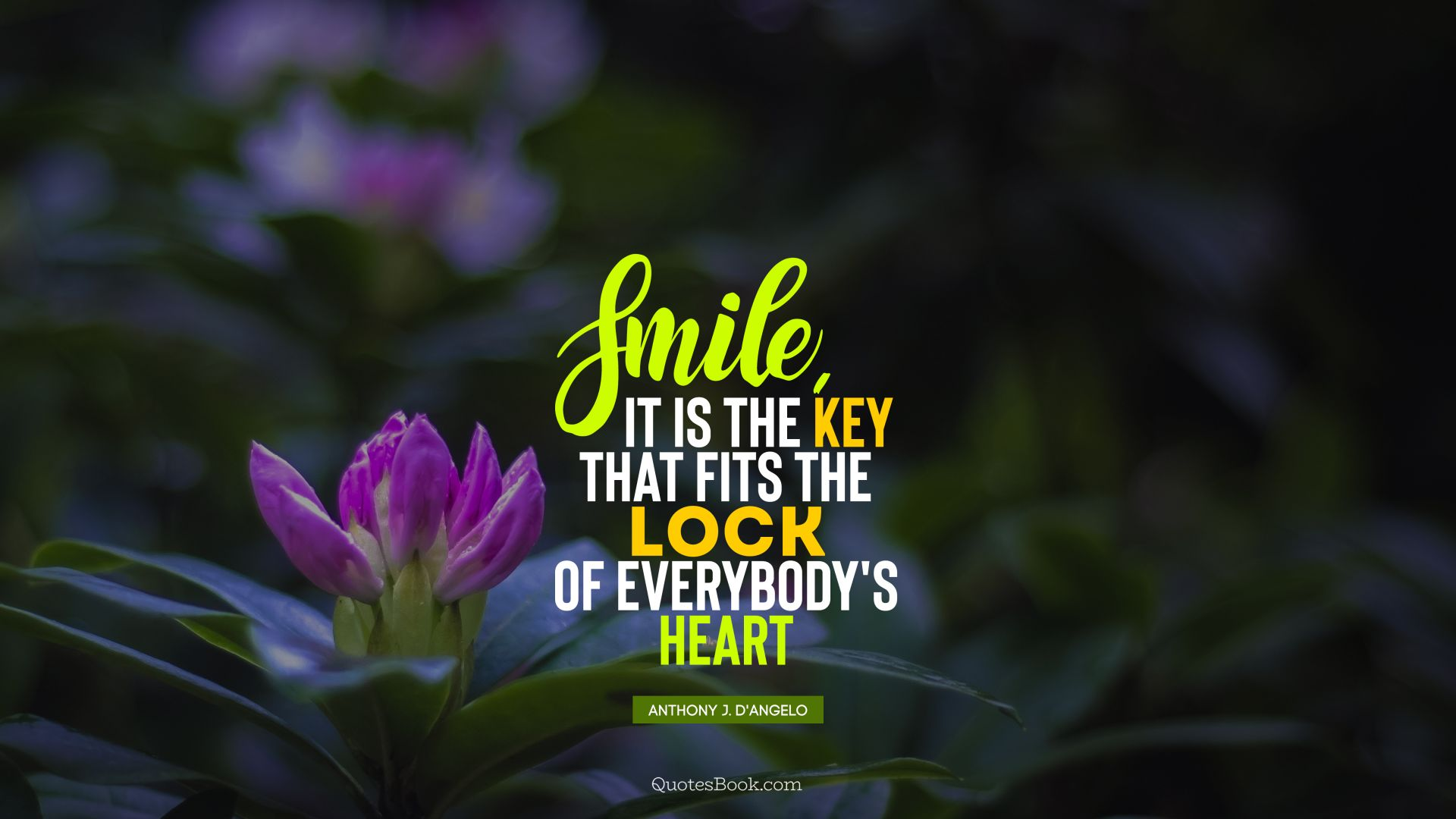 Smile, it is the key that fits the lock of everybody's heart. - Quote by Anthony J. D'Angelo