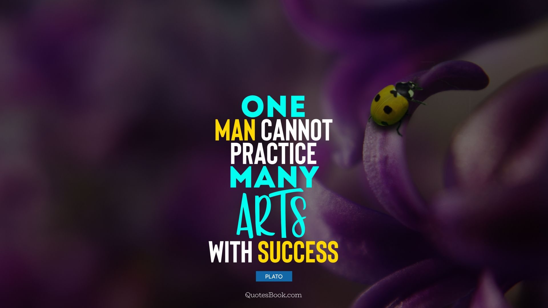 One man cannot practice many arts with success. - Quote by Plato
