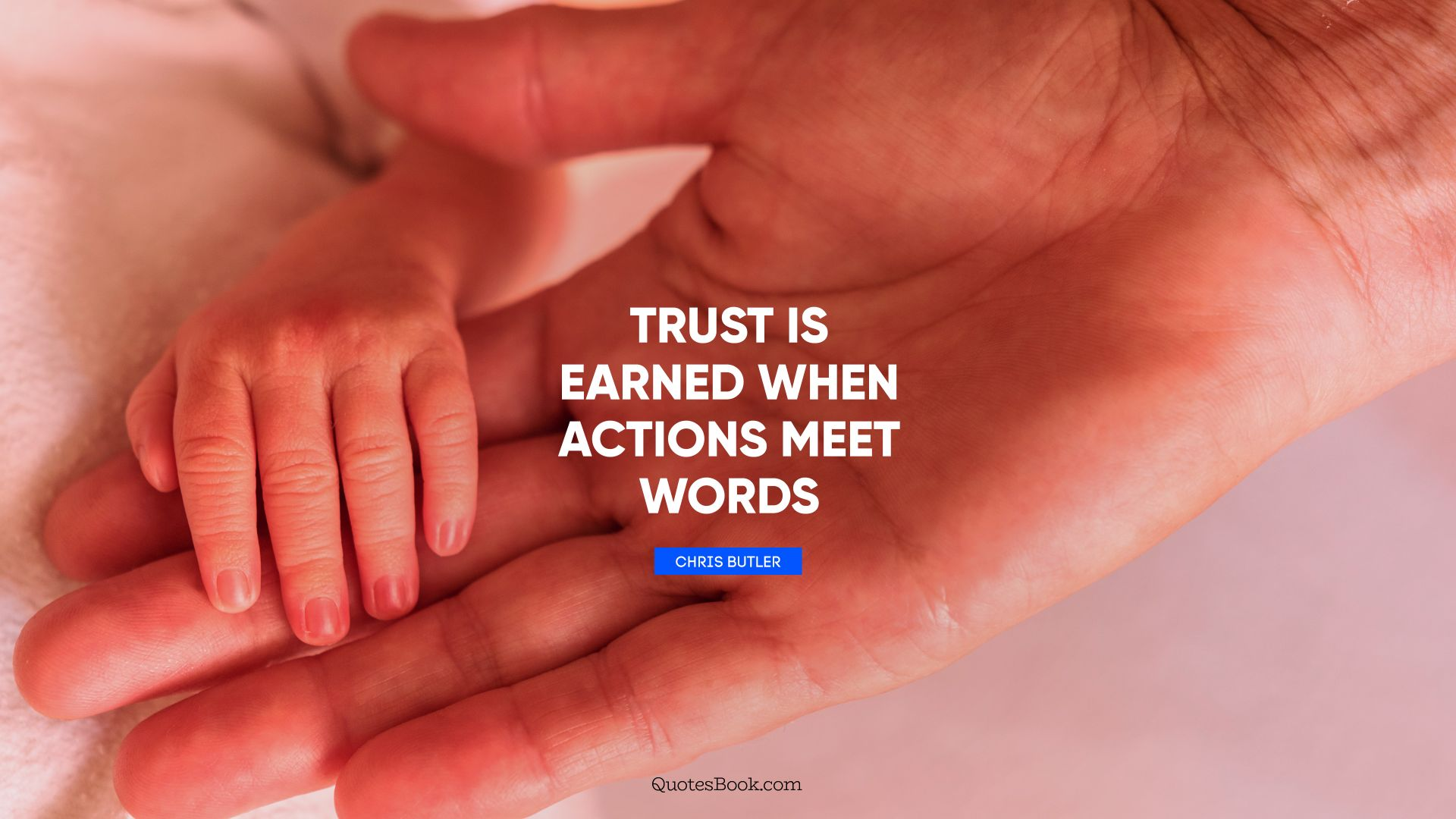 Trust is earned when actions meet words. - Quote by Chris Butler