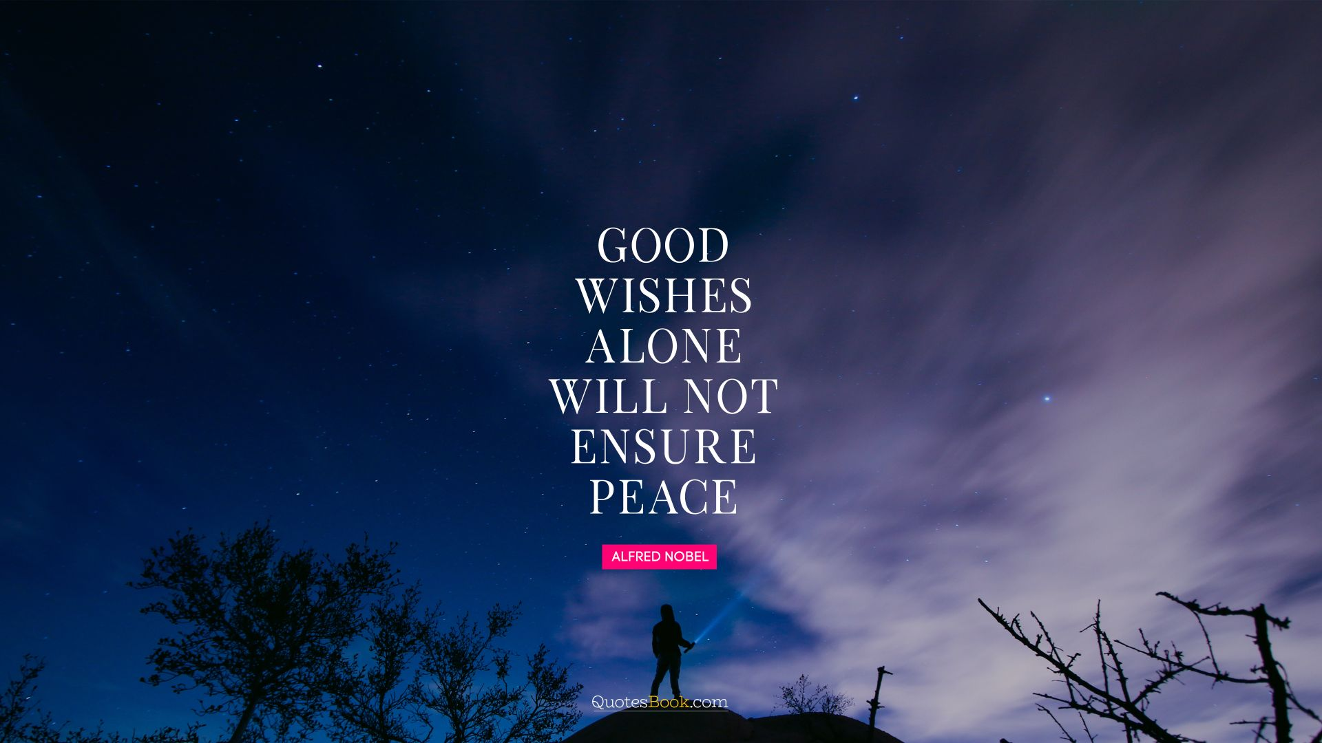 Good wishes alone will not ensure peace. - Quote by Alfred Nobel