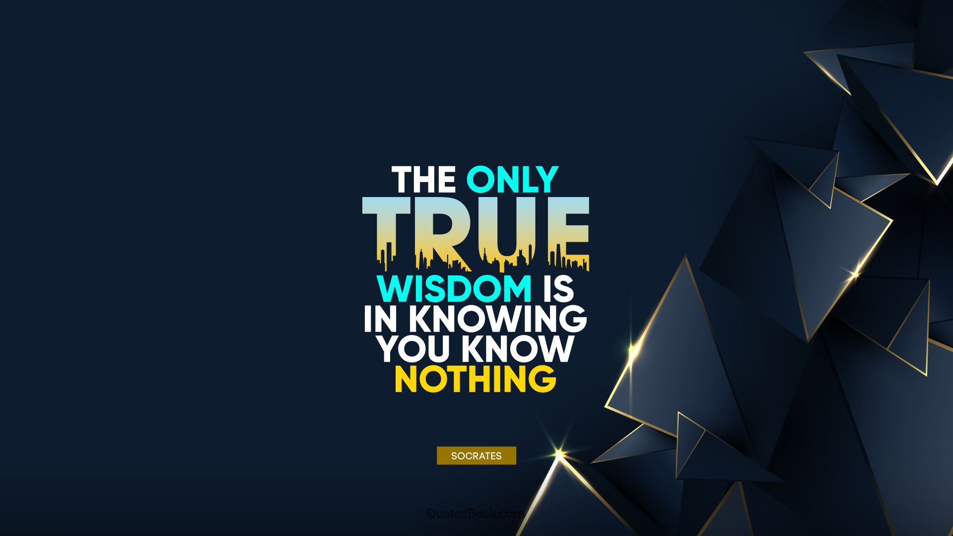 The only true wisdom is in knowing you know nothing. - Quote by Socrates