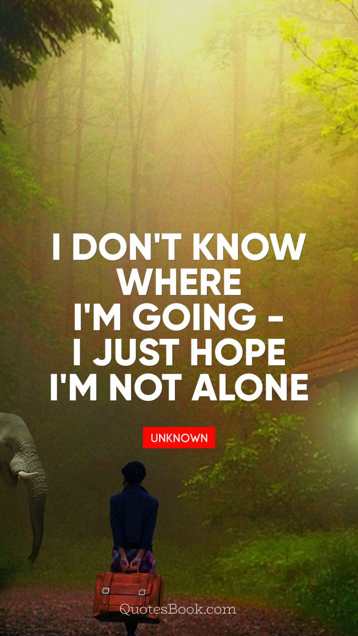 I Dont Know Where Im Going I Just Hope Im Not Alone Quotesbook