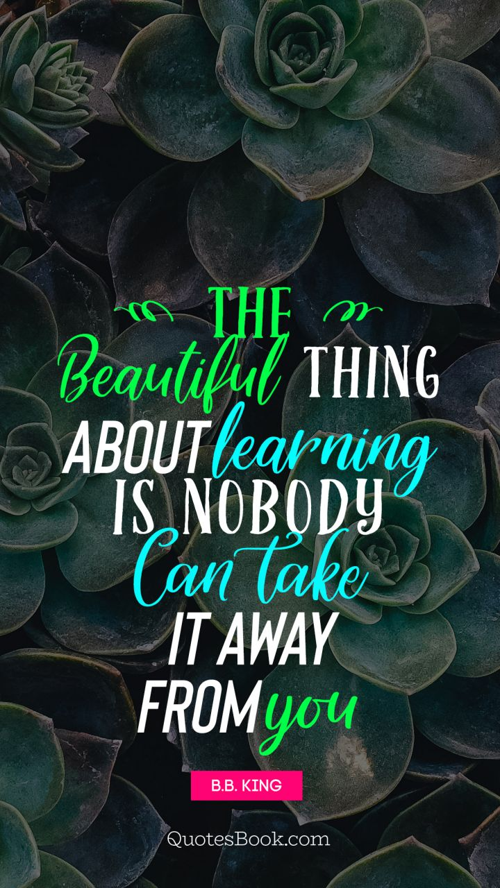 The beautiful thing about learning is nobody can take it away from you. - Quote by B.B. King