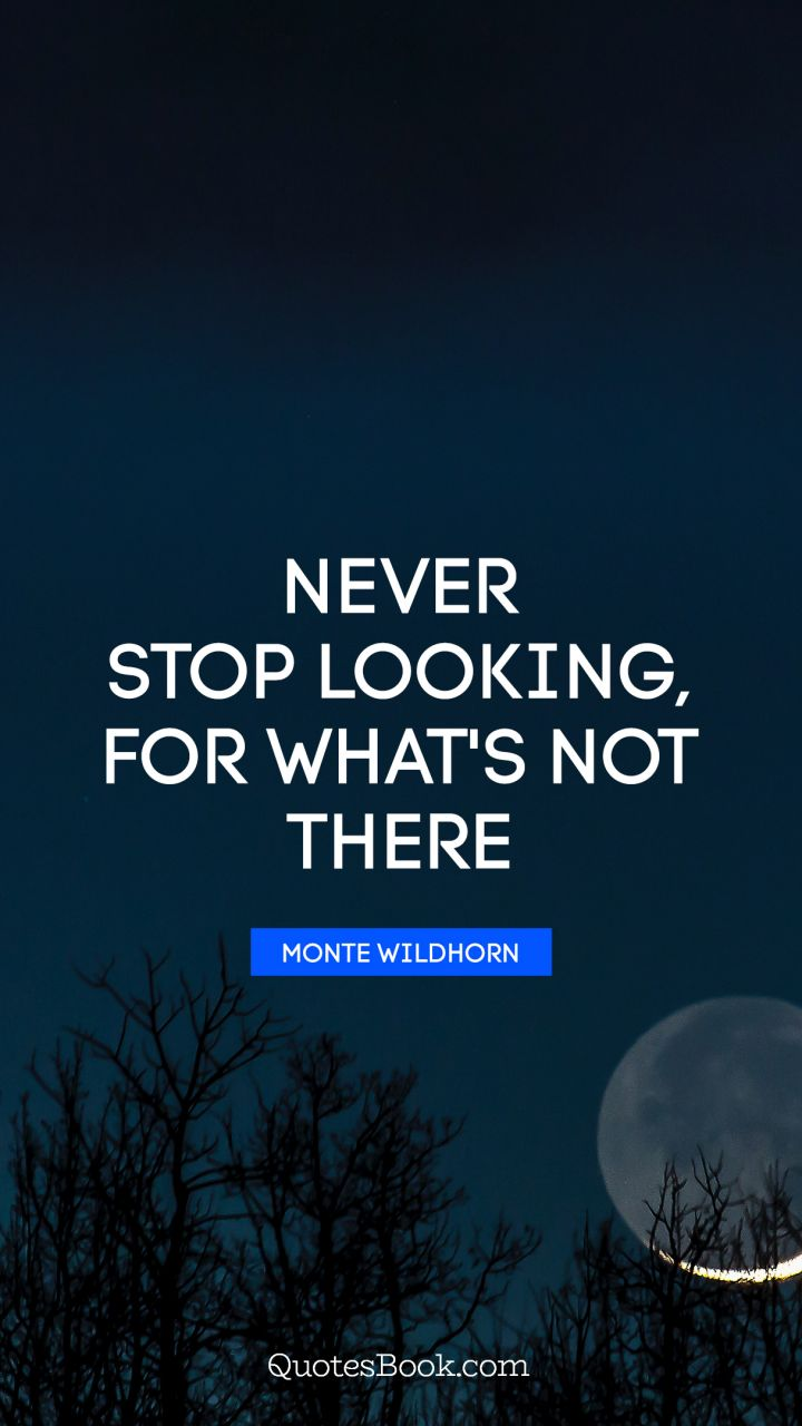 Never stop looking, for what's not there. - Quote by Monte Wildhorn