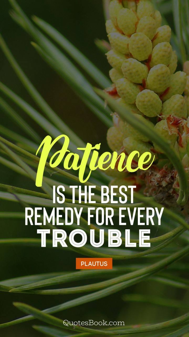 Patience is the best remedy for every trouble. - Quote by Plautus