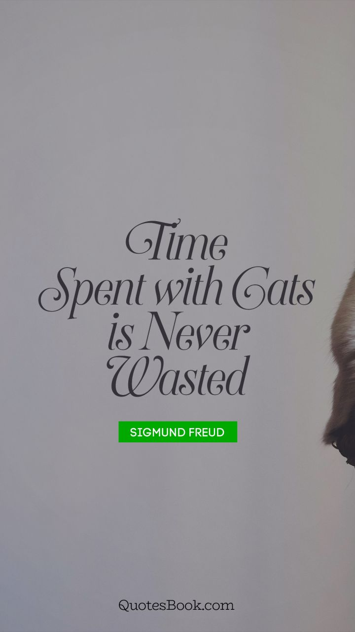 time spent cats is never wasted quote by sigmund freud