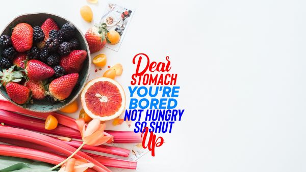 Diet Quote - Dear stomach you're bored not hungry so shut up. Unknown Authors