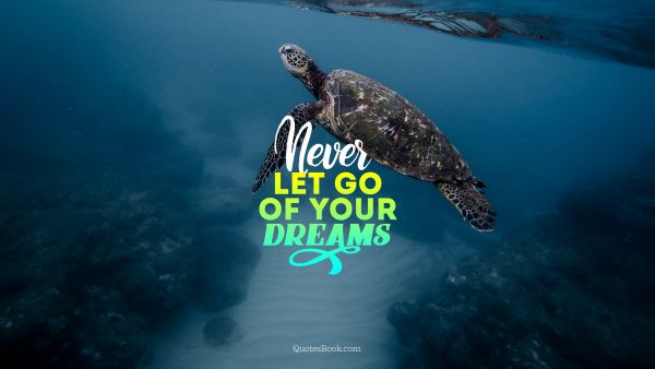 Dreams Quote - Never let go of your dreams. Unknown Authors