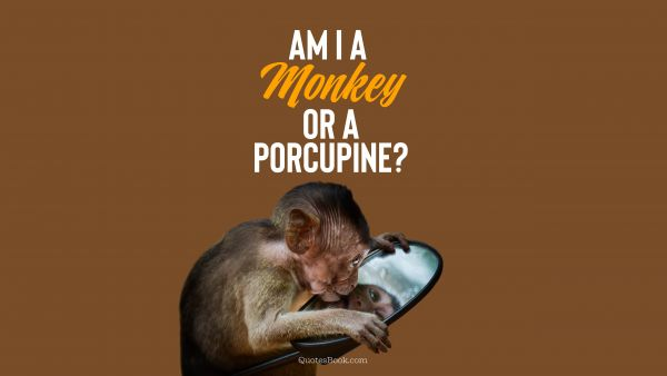 RECENT QUOTES Quote - Am I a monkey or a porcupine?. Unknown Authors