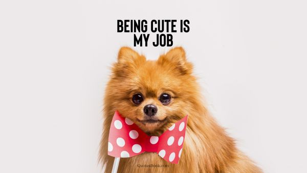 Memes Quote - Being cute is my job. Unknown Authors
