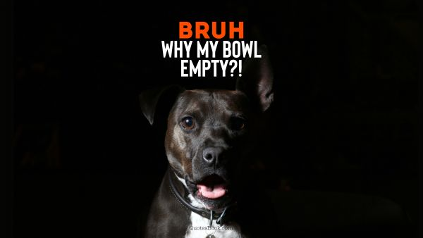 RECENT QUOTES Quote - Bruh why my bowl empty?!. Unknown Authors