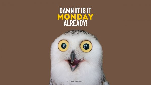 Search Results Quote - Damn it's Monday already!. Unknown Authors