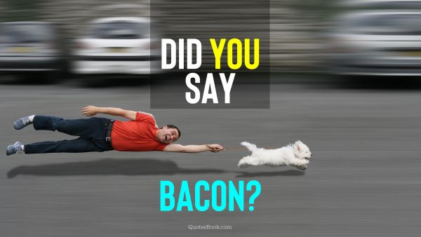 Memes Quote - Did you say bacon?. Unknown Authors