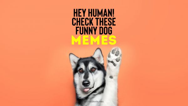 Memes Quote - Hey human! Check these funny dog memes. Unknown Authors