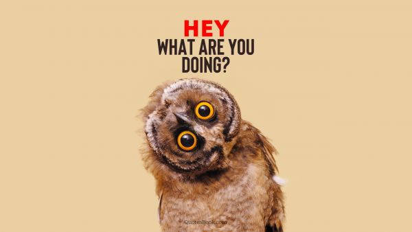 Memes Quote - Hey what are you doing?. Unknown Authors