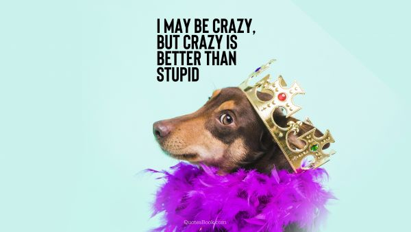I may be crazy, but crazy is better than stupid