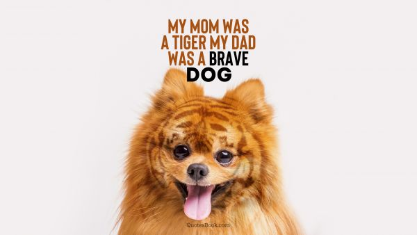 Memes Quote - My mom was a tiger my dad was a brave dog. Unknown Authors