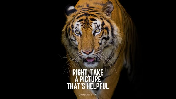 Memes Quote - Right, take a picture that's helpful. Unknown Authors