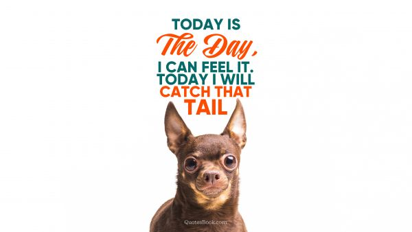 Memes Quote - Today is the day, I can feel it. Today I will catch that tail. Unknown Authors