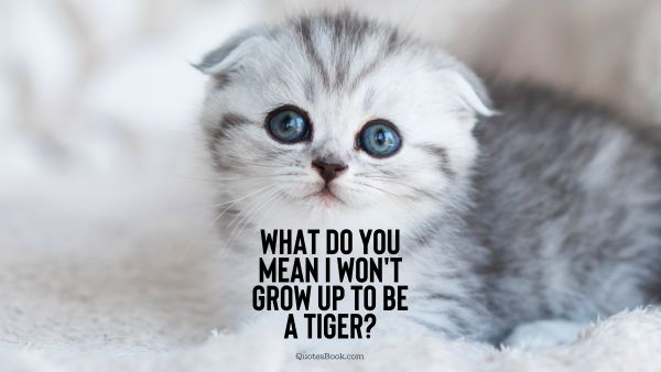 Memes Quote - What do you mean I won't grow up to be a tiger?. Unknown Authors
