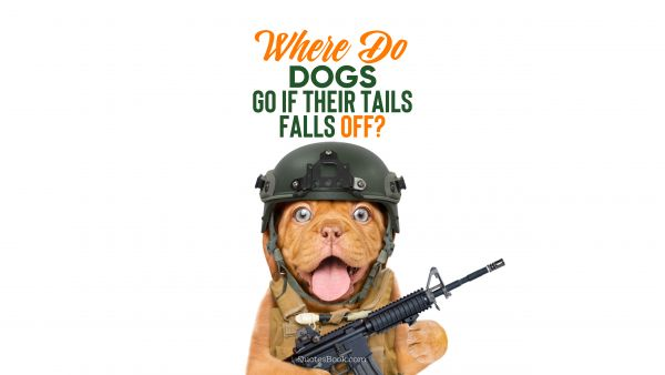 Memes Quote - Where do dogs go if their tails falls off?. Unknown Authors