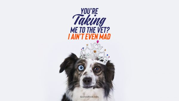 RECENT QUOTES Quote - You're taking me to the vet? I ain't even mad. Unknown Authors