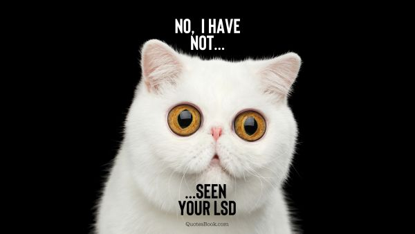 Funny Quote - No, I haven't seen your LSD. Unknown Authors