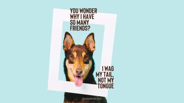 Funny Quote - You wonder why I have so many friends? I wag my tail, not my tongue. Unknown Authors