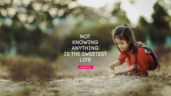 Not knowing anything is the sweetest life
