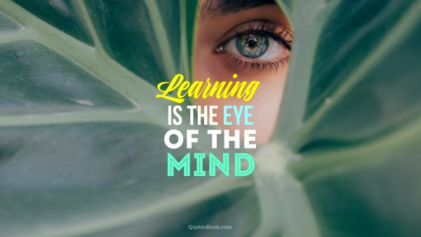 Learning is the eye of the mind