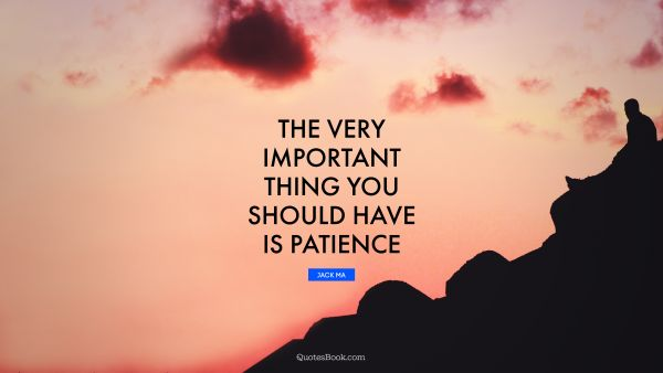 QUOTES BY Quote - The very important thing you should have is patience. Jack Ma