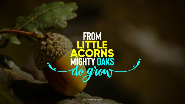From little acorns mighty oaks do grow