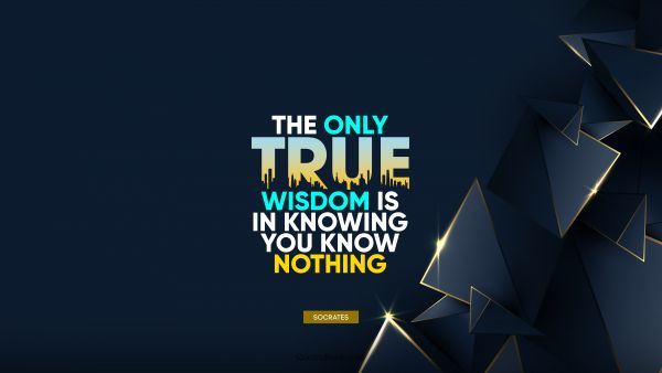 Wisdom Quote - The only true wisdom is in knowing you know nothing. Socrates