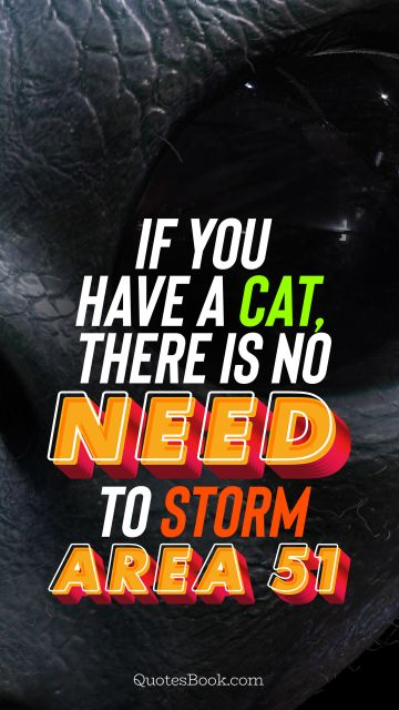 If you have a cat, there is no need to storm Area 51