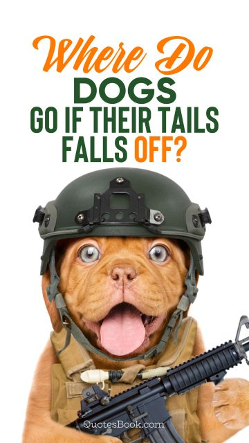 Search Results Quote - Where do dogs go if their tails falls off?. Unknown Authors